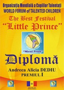The Best Festival Little Prince