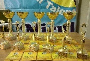trofee, The Best Festival Little prince